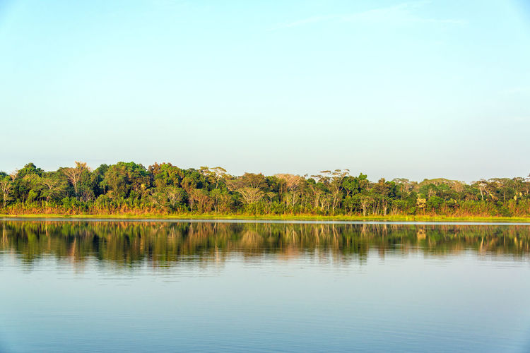 Scenic view of calm lake against clear sky