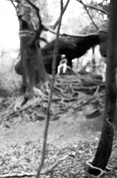 Sächsische Schweiz Blackandwhite Black & White Bokeh EyeEm Best Shots