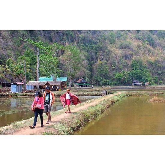 Walaupun banyak negri kujalani, Yang masyhur permai dikata orang. Tetapi kampung dan rumahku, Di sanalah kurasa senang. Tanahku tak kulupakan, Engkau kubanggakan. , Song : Tanah Air Cipt : Ibu Sud Frame : @acheeel @rijrijal *mishel Tanahair Culture Semesta Budaya Adat Senja  Ibupertiwi KelilingIndonesia Indonesiabeuty Kamerahpgw VSCO Vscocam Iphonesia Gadgetgrapher Id_pendaki Jelajah Negeri Song Music Instamood Instagram Instagood Sea Instanusantara Nusantara