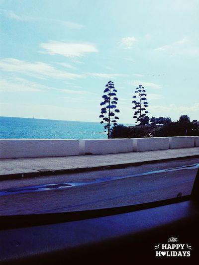 Sicilia Mia ❤