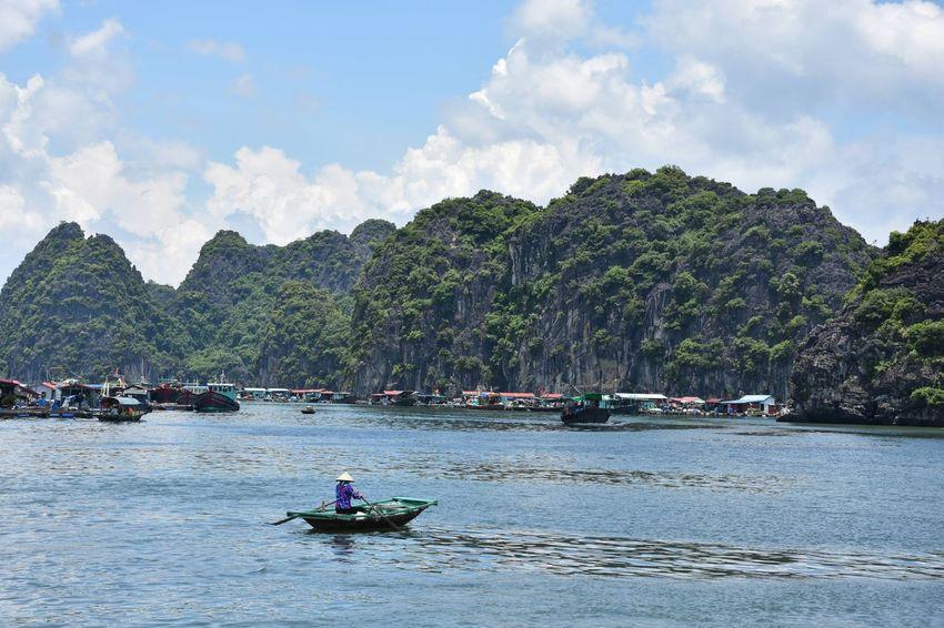 Halong Bay Vietnam Vietnam ASIA Tree Water Nautical Vessel Oar Beach Sky EyeEmNewHere