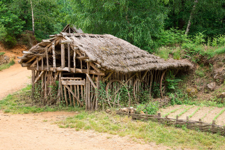 House Garden Primitive Medieval Architecture Medieval Domestic Garden Tree Shelter Thatched Roof Sand Field Stack Grass Architecture Farmland Hut Stilt House Shack Stalk Sandy Beach Country House Deforestation Lumber Industry Countryside Bamboo Timber Stilt Woodpile Residential Structure Bale