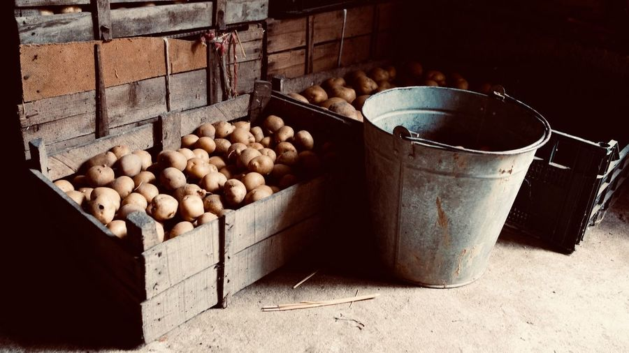 Potatoes Farming Farmer Farm Earth Country Countryside Potatoes Potato Food And Drink Food Freshness Healthy Eating Wellbeing Container No People Still Life Large Group Of Objects Abundance Indoors  Crate Sunlight Vegetable Fruit Box Raw Food