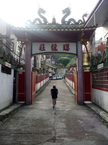 Full Length Rear View Gate Walking One Person Architecture The Way Forward Day People Adult Built Structure One Man Only Only Men Adults Only Real People Outdoors Tree Sky