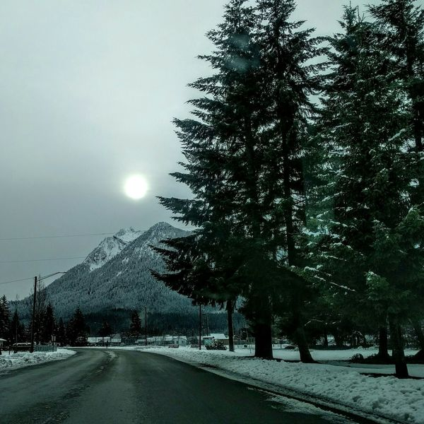 Jumbo Mountain, winter in Washington State. Winter Trees Mountains Mountains And Sky Cold Cottage Life Darkness And Light Its Cold Outside