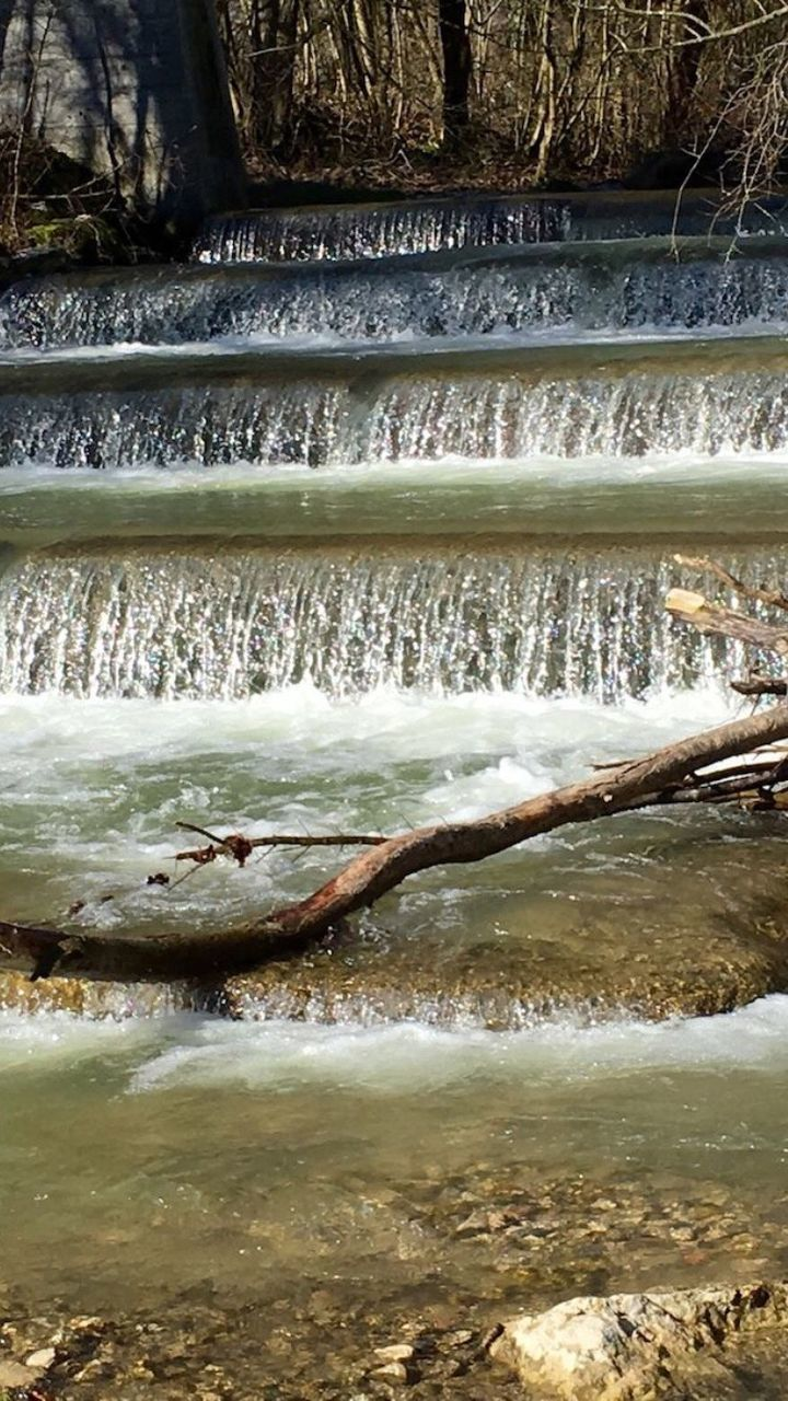 Stream Flowing By Fallen Tree