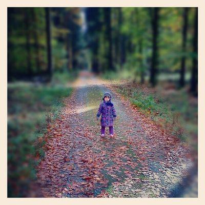 Lea Herbst Eisenbach Obernburg ...ein männlein steht im Walde.....