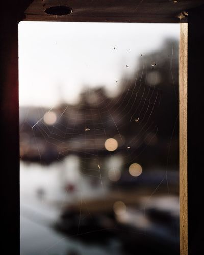 Spiders point of view Nature Boats Web Pier Through Spiders Web Bokeh Bubbles Close-up No People Focus On Foreground Spider Pattern Water Transparent Spider Web Gh5