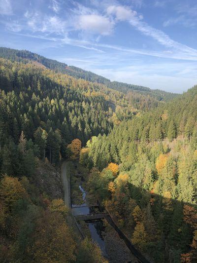 Herbst-Impressio