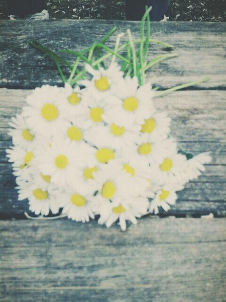 Natureflower Beautiful ♥ Good Day!