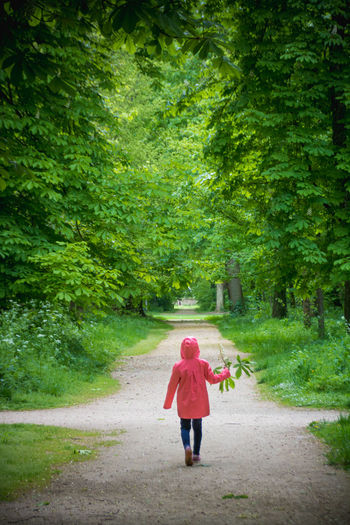 Springtime Spring Park Green Tree Full Length Plant Rear View One Person Road Direction Transportation Walking Casual Clothing The Way Forward Day Nature Green Color on the move Footpath Adult Forest Childhood Outdoors Innocence Cross Section Hood Nature