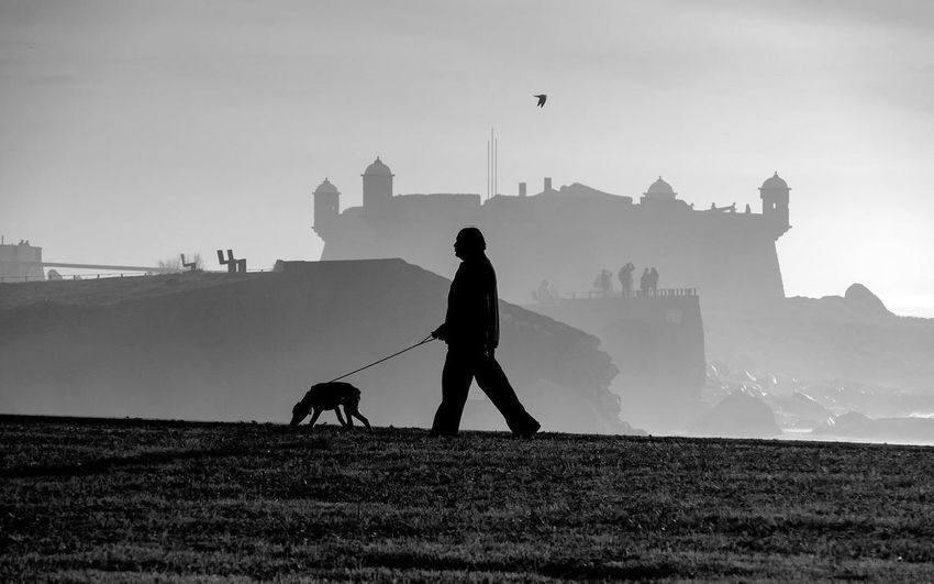 Silhouette man with dog walking against castle during foggy weather