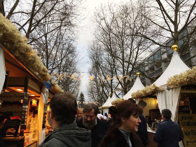 Christmas Market Bare Trees Holidays