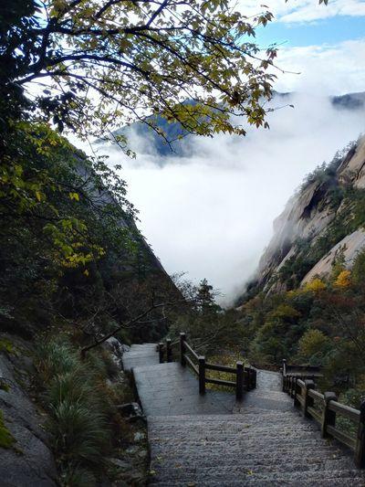 Nature Beauty In Nature CLOUDSEA Cloud Sea (雲海)