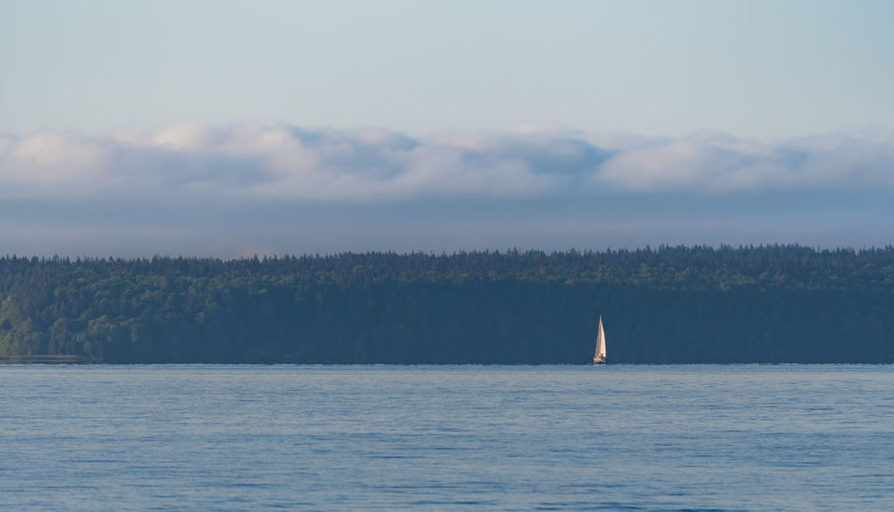 Sailboat on the sunshine coast of british columbia Beauty In Nature British Columbia Canada Cloud - Sky Day Nature Nautical Vessel No People Outdoors Sailboat Sailing Scenics Sea Sky Tranquility Water Waterfront
