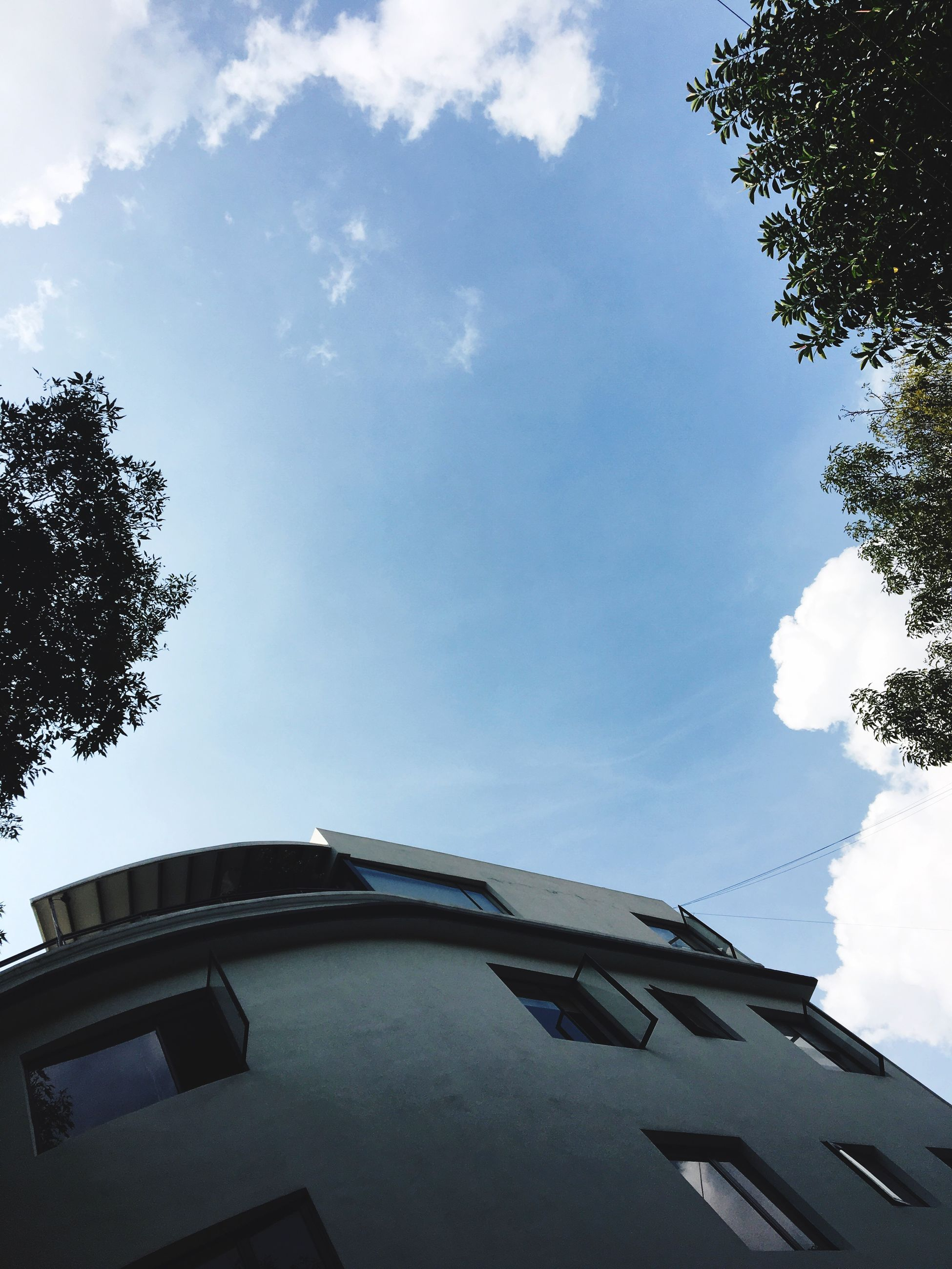 low angle view, architecture, building exterior, tree, built structure, sky, directly below, blue, branch, day, cloud - sky, outdoors, no people, high section