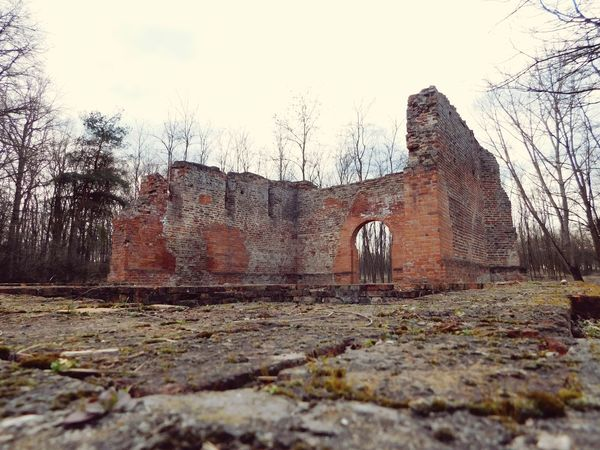Old Buildings Destroyed Forest Advanture Old Curch