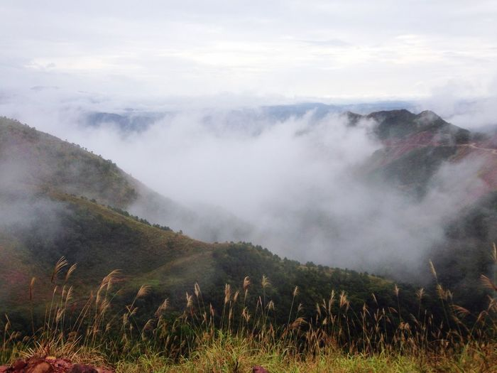 Scenic View Of Valley And Mountains In Foggy Weather Against Sky
