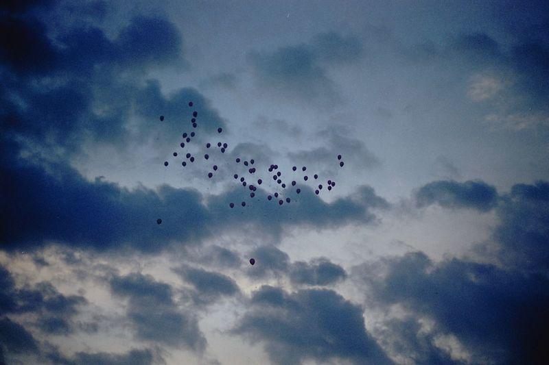35mm 35mm Film Baloons Kharkiv Sky Cloud - Sky Nofilter No People Fujiklasse Fujifilm Agfa Agfa Vista200 Filmcamera Filmphotography Filmisnotdead City