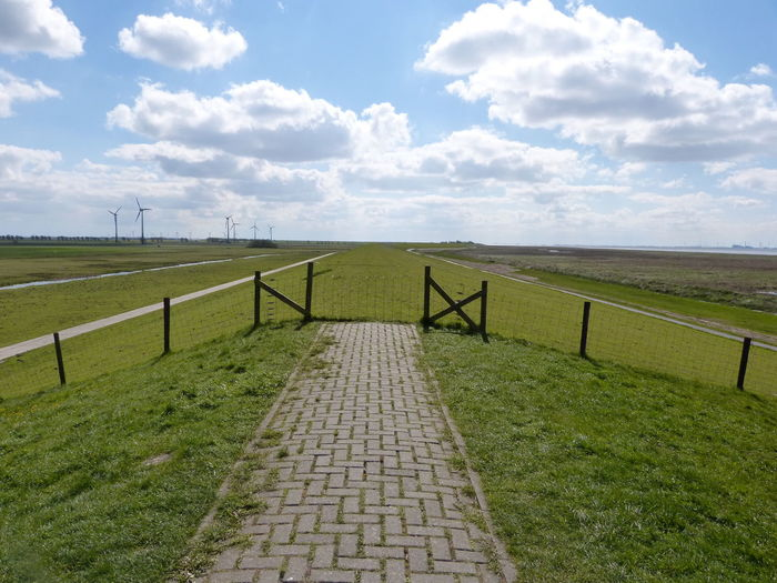 Dyke look in Ostfriesland at the North Sea... :-) Beauty In Nature Cloud - Sky Day Deich  Deichstraße Dyke  Dyke Look East Frisian Eastfrisia Frisia Nature No People Nordsee Nordsee Feeling🐚🌾 Nordseeküste North Sea North Sea Coast North Sea Region Northsea Ostfriesisch Ostfriesland Ostfriesland Kultur Outdoors Scenics Sky