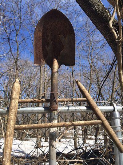 Shovel Art Tree