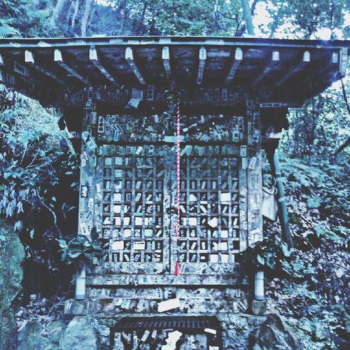 浄蓮の滝付近