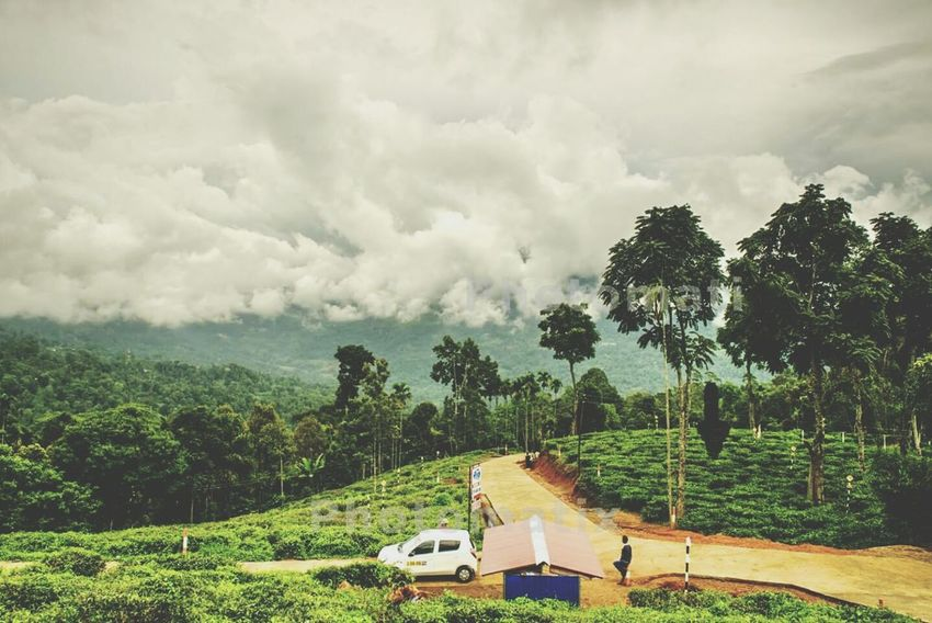 First Eyeem Photo Beautiful Day Taking Photos Traveling In Sri Lanka