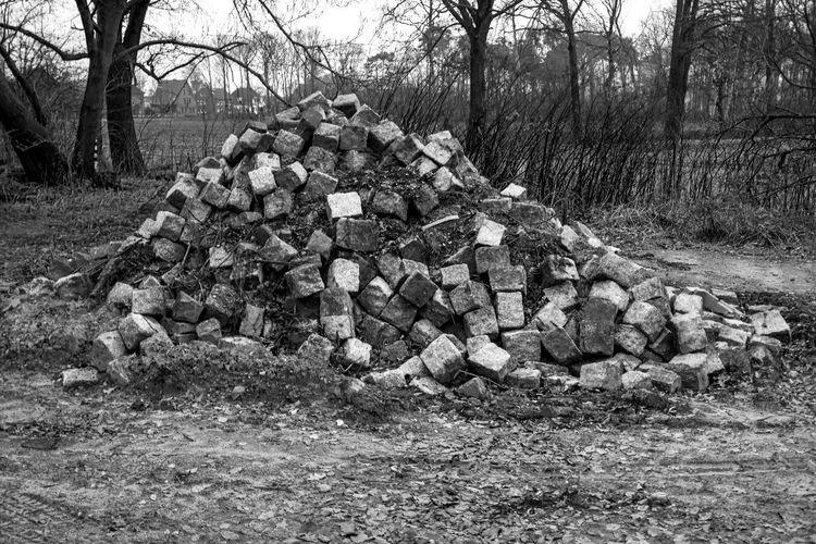 Schwarz & Weiß Abundance Blackandwhite Day Haufen Haufen Steine Heap Large Group Of Objects No People Outdoors Schwarzweiß Stack Steine Steinhaufen Stones Tree