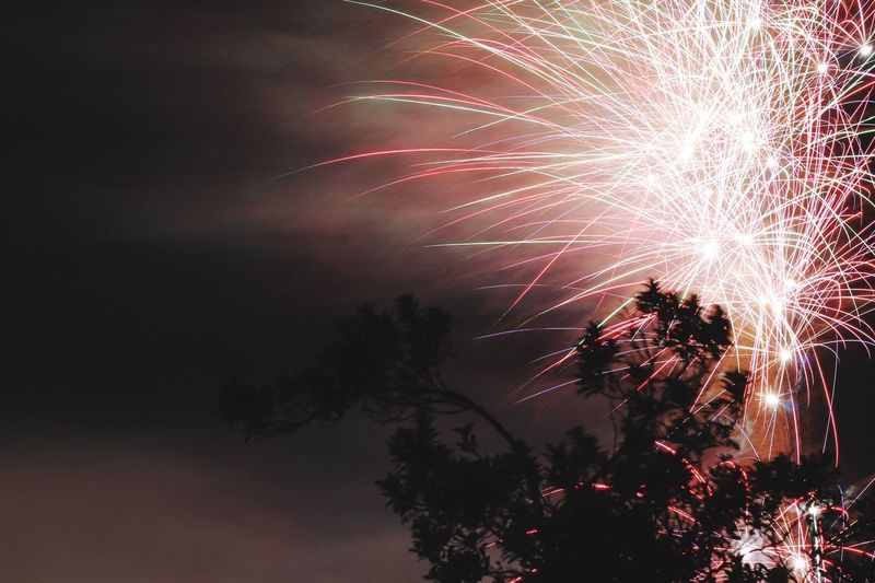 Illuminated firework exploding against sky at night