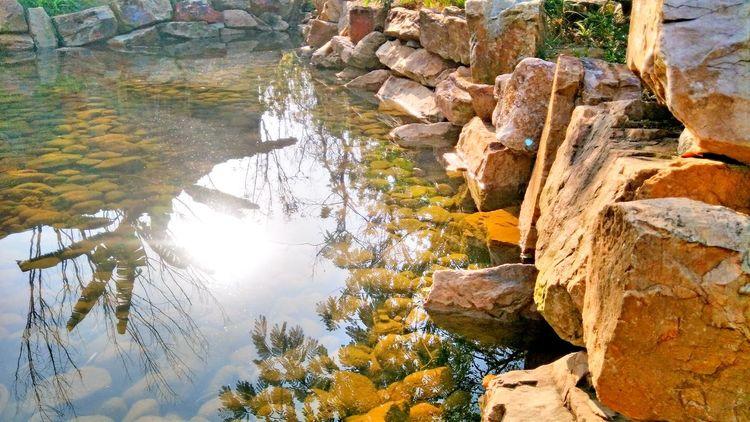 暖冬 Nature Outdoors Day Sunlight Water Beauty In Nature