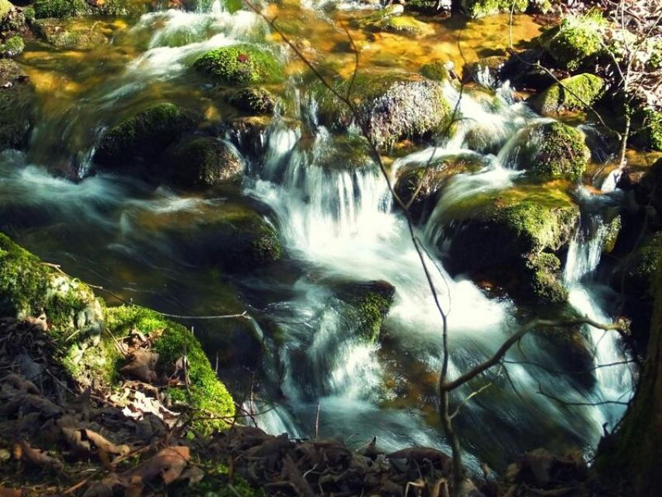 water, flowing water, waterfall, flowing, rock - object, motion, nature, beauty in nature, stream, forest, scenics, long exposure, tranquility, tranquil scene, river, plant, day, moss, high angle view, idyllic