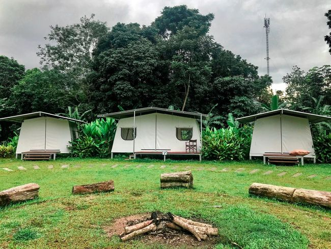 Camping tent Camping Fire Travel Forest Photography Backgrounds Activity Holiday Tourism Lifestyles Hotel And Resort Thailand Plant Tree Nature Green Color Sky Built Structure No People Outdoors Cloud - Sky Beauty In Nature Building Exterior Growth Park Absence Field Architecture Front Or Back Yard Grass Building