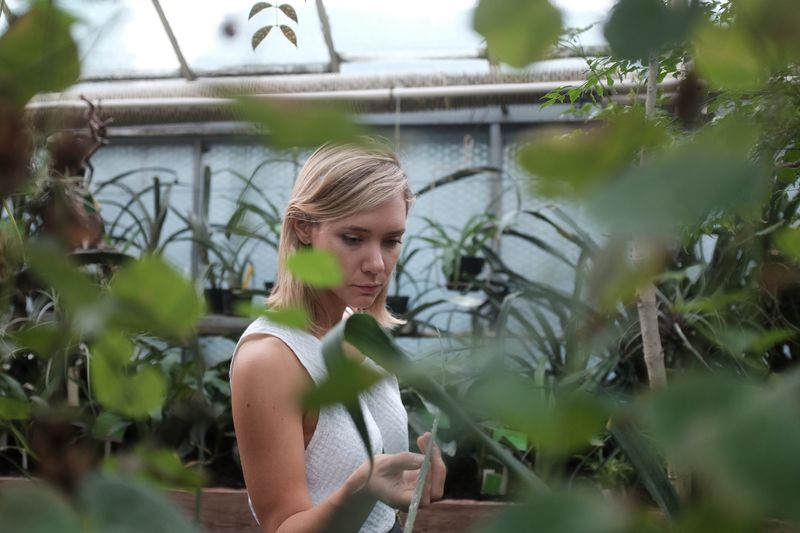 Young Woman Looking At Plants