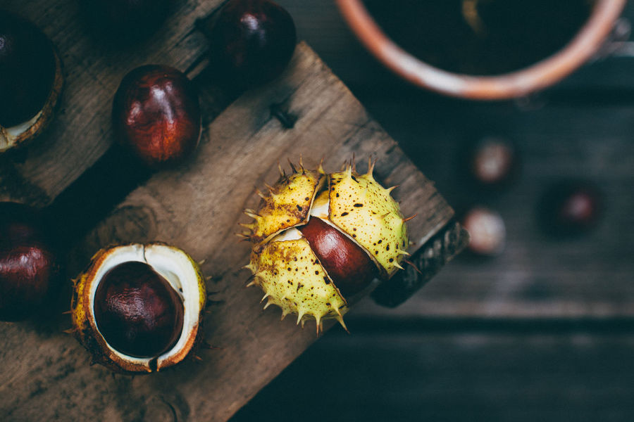 chestnuts Autumn Colors Chestnut Colors Of Autumn EyeEm Nature Lover Getting Inspired Nature Photography Nature_collection Fall Colors Fall Beauty