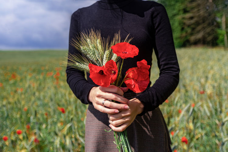 poppies Poppy Girl Morning Wardrobe Suitup Hands Arms Poppy Flowers Field Human Hand Flower Head Flower Poppy Cereal Plant Rural Scene Farm Worker Wheat Red Springtime Farmland Cultivated Land Cultivated Plowed Field Ear Of Wheat Harvesting Picking Plantation
