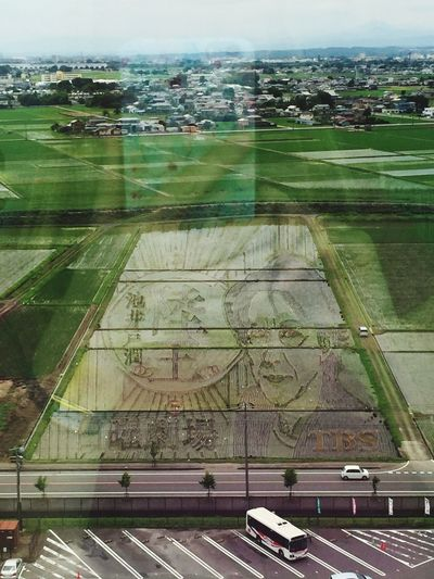 Rice field art. Can you see a face ? Traveling Japanese Culture Rice Paddy Rice Field Art Japan Check This Out Tadaa Community 田んぼアート たんぼ Aerial View Birdview Investing In Quality Of Life Ricefield Art