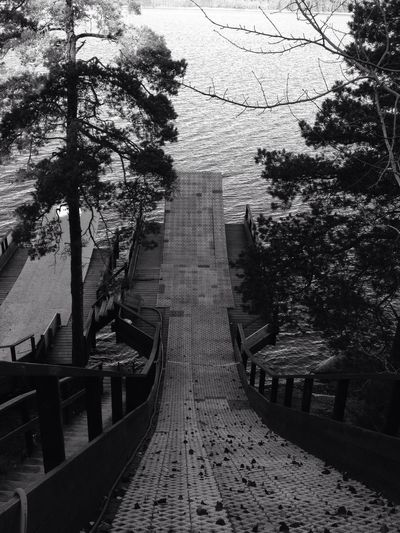 Let's jump Blackandwhite Bw_collection Stockholm Archipelago Autumn