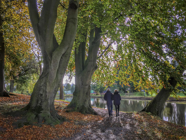 Walking on a beautiful autumn day The Netherlands Walking Around Autumn Beauty In Nature Branch Day Dutch Full Length Growth Men Nature Outdoors People Real People Scenics Tree Tree Trunk Two People