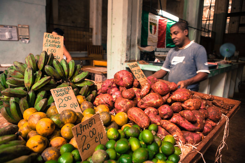 A grocer sells his fruit and vegetables on a stall at a local store. Agriculture Cuba Cuban Daily Life Dailyphoto Display Food Fruit Greengrocer Grocery Shopping Havana Local Food Market Market Stall Marketplace Old City Selling Shopping Store Streetphotography Trade Travel Vegetables Work