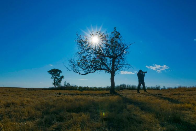 Starburst! Autumn Landscape_photography Landscape StarBurstPhotography Sunrays Blue Sky Mood Silhouette Photographer Blue Field Landscape Nature Grass One Person Bare Tree Tree Outdoors Beauty In Nature Clear Sky Real People Scenics Sky Day People