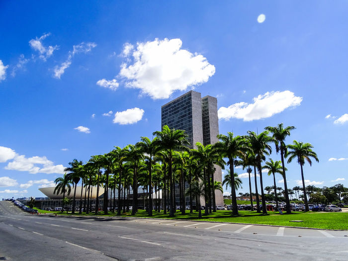 ezefer Architecture Blue Brasília Building Exterior Built Structure City Cloud - Sky Congresso Nacional Day Growth Nature No People Outdoors Palm Tree Road Sky Skyscraper The Architect - 2017 EyeEm Awards Tree