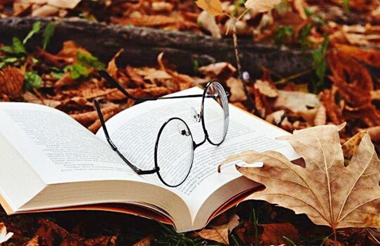 Heart Shape Eyeglasses  Autumn No People Close-up Leaf Nature Day Outdoors Paper Beauty In Nature EyeEm Gallery Nature Natures Diversities Book Booking A Room Kitap Kitapkokusu Kitaplariyikivar Kadrajturkiye Kadraj_arkasi Kadrajimdan Kadrajımdanyansıyanlar