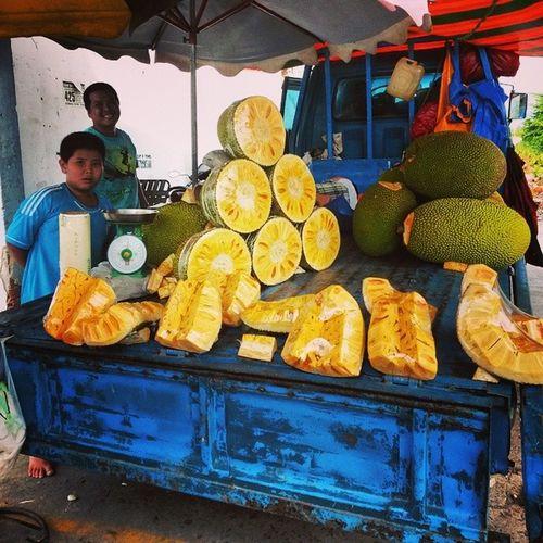 O.o Fresh Jaclfruit Hochiminh Vietnam