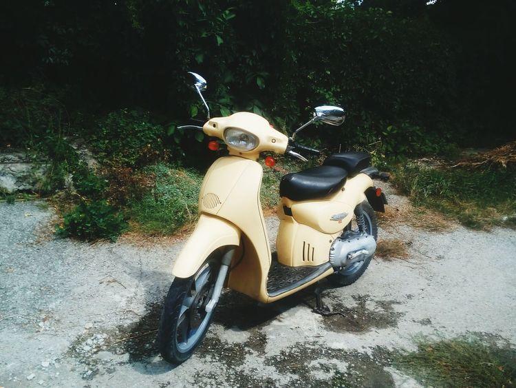 Aprilia Scarabeo 50ccm My Scooter