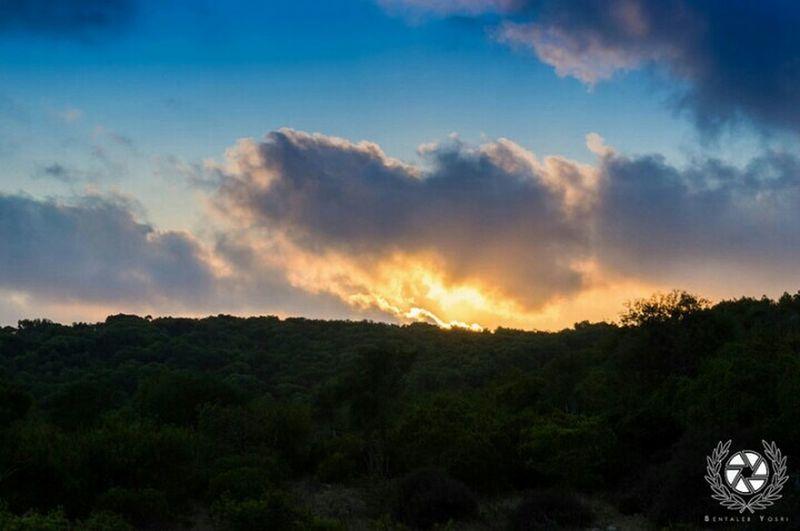 Eyeem Best Shots - Silhouette Clouds And Sky Eyem Best Shots Nikonphotography Sunset Outdoor Photography Sky And Clouds Nikon Haouaria Hawareya Tunis