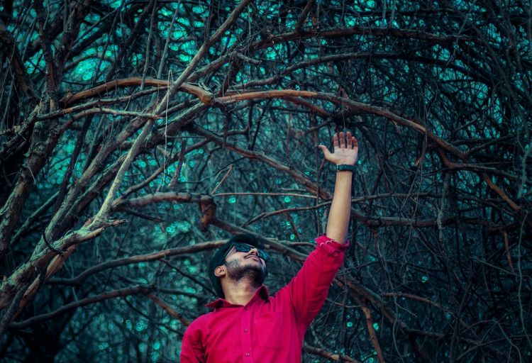 Man reaching bare tree in forest