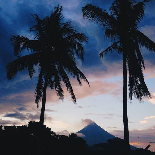Sunset with Mayon Volcano. Nature Nature_collection Nature Photography Naturelovers Nature On Your Doorstep Traveling Yesuventures Travel Travel Photography Mountains Beauty VSCO VSCO Cam Vscodaily Philippines Traveler Vscogood Photography Photo Photooftheday Instagood Instadaily