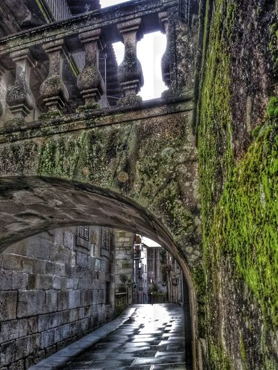 urban moss arquitecture streets Check This Out Taking Photos Hello World Savestreamzoo