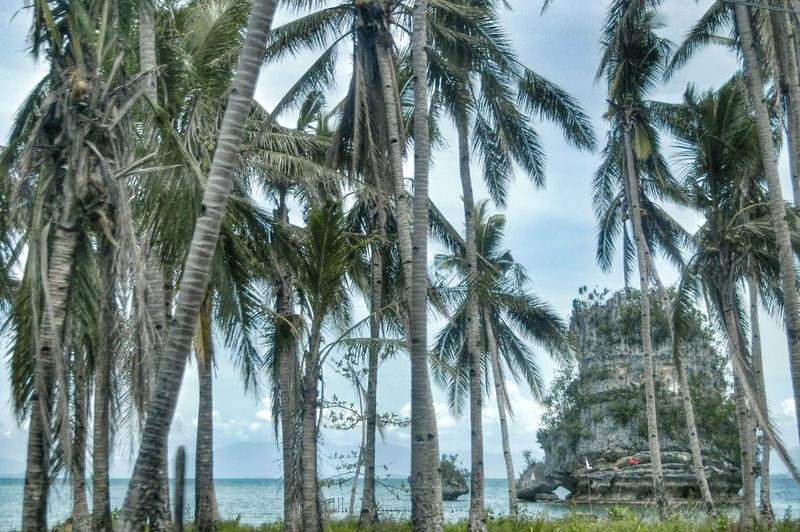 Caluwayan Beach Resort Easternsamar EyeEm Pinoy RenPhotography