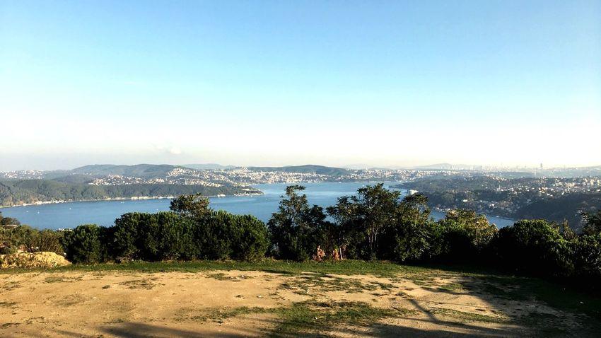 Bosphorus, Istanbul Sea Sea And Sky Tree First Eyeem Photo